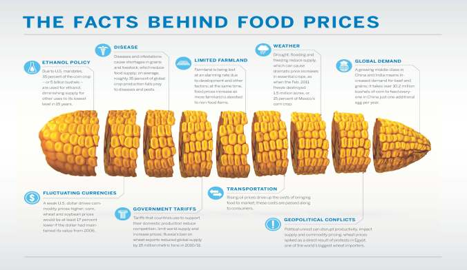 Corn_infographic